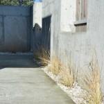 StudioB_Ogrod_z_betonem_02