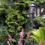 StudioB-ogrod bez trawnika 20