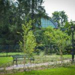 Ogrod_weselny_StudioB201907-39