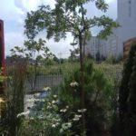 StudioB_maly_ogrod_20200720-4